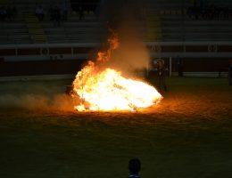 Espectáculos con Fuego